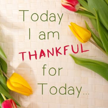 Resetting our emotional state through gratitude
